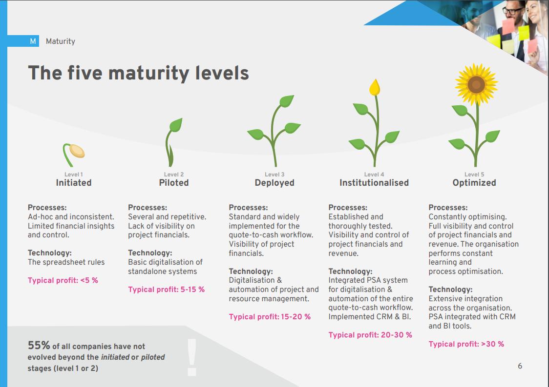 2020 SPI Maturity Model